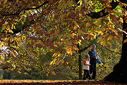 © Licensed to London News Pictures. 01/11/2011. Kew, UK. A father and daughter walk through the trees. People enjoy the Autumn sunshine in Kew Gardens today, 1st November 2011. Parts of the UK are experiencing higher than average temperature for the time of year.  Photo credit : Stephen Simpson/LNP