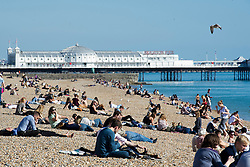 © London News Pictures. 23/09/2013 . Brighton, UK.   Conference delegates and members of the public enjoy the sunshine on Brighton Beach in Brighton, East Sussex,  where the Labour Party Conference is currently taking place. . Photo credit : Ben Cawthra/LNP