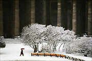Fresh from a Baltic storm, snow brightens the ninety-six neoclassical columns of the Kazan Cathedral in St. Petersburg, capital of imperial Russia.  The cathedral was completed in 1811 by Tsar Alexander I, whose ambitious construction schemes transformed St. Petersburg into a European capital whose architectural lavishness rivaled that of Rome.  © Steve Raymer / National Geographic Creative