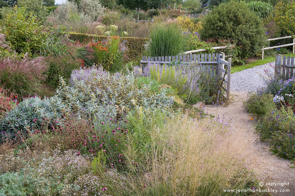 Gate at the entrance to the garden at Marchants. Autumn borders of grasses and late flowering perennials