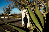The silhouette of Leroy Medlin, 33, is casted as he poses for a portrait near the Loving County Courthouse in Mentone, Texas, November 16, 2020. Loving County, in rural West Texas, was the last county in the continental United States with zero Coronavirus cases. The county confirmed its first case of the virus the following day. (Joel Angel Juárez / The New York Times)