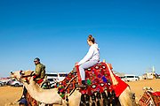 A teenage girl prepares to ride a camel at the Giza Pyramid Complex, Giza, Egypt.