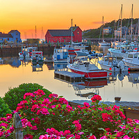 New England harbor scenery of Motif Number One, fishing boats and blooming rose flowers during at dawn in Rockport Harbor on Cape Ann, Massachusetts.<br /> <br /> Rockport harbor with Motif Number One photography photos are available as museum quality photo, canvas, acrylic, wood or metal prints. Wall art prints may be framed and matted to the individual liking and New England interior design projects decoration needs.<br /> <br /> Good light and happy photo making!<br /> <br /> My best,<br /> <br /> Juergen