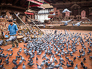 30 JULY 2015 - KATHMANDU, NEPAL:    A man feeds pigeons amidst piles of ruble and bricks stacked for recycling in Durbar Square in Kathmandu. Three months after the earthquake most of the tourist attractions are open but signs of the tremblor remain. The Nepal Earthquake on April 25, 2015, (also known as the Gorkha earthquake) killed more than 9,000 people and injured more than 23,000. It had a magnitude of 7.8. The epicenter was east of the district of Lamjung, and its hypocenter was at a depth of approximately 15 km (9.3 mi). It was the worst natural disaster to strike Nepal since the 1934 Nepal–Bihar earthquake. The earthquake triggered an avalanche on Mount Everest, killing at least 19. The earthquake also set off an avalanche in the Langtang valley, where 250 people were reported missing. Hundreds of thousands of people were made homeless with entire villages flattened across many districts of the country. Centuries-old buildings were destroyed at UNESCO World Heritage sites in the Kathmandu Valley, including some at the Kathmandu Durbar Square, the Patan Durbar Squar, the Bhaktapur Durbar Square, the Changu Narayan Temple and the Swayambhunath Stupa. Geophysicists and other experts had warned for decades that Nepal was vulnerable to a deadly earthquake, particularly because of its geology, urbanization, and architecture.     PHOTO BY JACK KURTZ