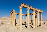Ruins at Palmyra, Syria. Ancient city in the desert that fell into disuse after the 16th century.