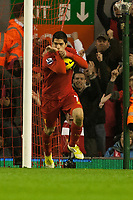 Football - 2012 / 2013 Premier League - Liverpool vs. Newcastle United<br /> Luis Suarez of Liverpool celebrates his equalising goal at Anfield