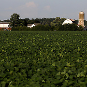 Farmland and two barns and silos in the Fulton County area outside of Archbold, Ohio, on Wednesday, July 25, 2018. THE BLADE/KURT STEISS