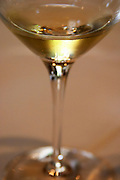 A glass of champagne with a few bubbles floating at the rime of the glass, the rest of the glass unsharp out of focus, Champagne Jacquesson in Dizy, Vallee de la Marne, Champagne, Marne, Ardennes, France, low light grainy grain