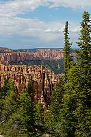 Black Birch Canyon,elevation 8750, Bryce Canyon National Park,Utah, USA.