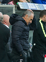 Football — 2016 / 2017 Premier League - Swansea vs Liverpool<br /> <br /> Swansea City manager Francesco Guidolin on the touchline with hand on head after liverpool draw level  at the Liberty Stadium.<br /> <br /> pic colorsport/winston bynorth