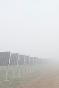 Winter foggy morning.<br />At this time of the day, panels are angled at 45º for the best performance.