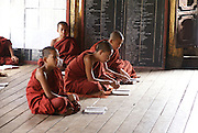 Myanmar, Shan State, Inle Lake, Shwe Yaunghwe Kyaung Monastery, Novice monks studying