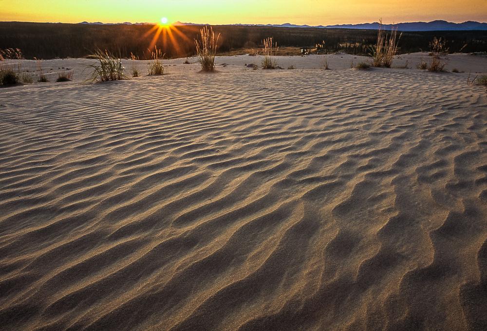 Kobuk Dunes Wilderness, sunset, September, Kobuk Valley National Park, Alaska, USA
