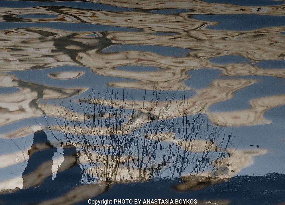 Υδάτινα Όνειρα III<br />  <br /> Kastoria 2005