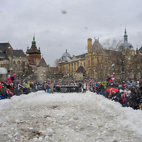 Failed world record breaking attempt in the category of the snowball fight involving the most people held in the park near Vajdahunyad Castle.