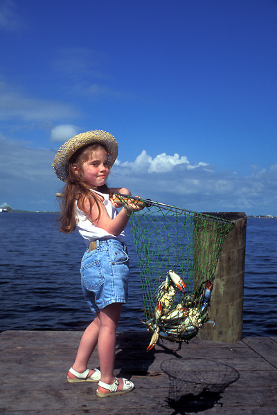 Stock photo of a young girl holding a net full of crabs