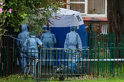 © Licensed to London News Pictures. 04/07/2020. London, UK. An investigators looks inside a forensic tent, as collegues look on, on Westbourne Estate in Islington. Metropolitan Police Service officers were called at 15:20BST on Saturday, 4 July to Roman Way N7 following reports of shots fired. Officers attended with London Ambulance Service (LAS) and found a man, believed to be aged in his early 20s, suffering from gunshot injuries. Despite their best efforts, he was pronounced dead at the scene. Photo credit: Peter Manning/LNP