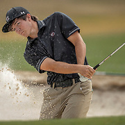 South Carolina Gamecocks golfer Caleb Proveux follows his shot out of the bunker during a tournament in Columbia, S.C. ©Travis Bell Photography