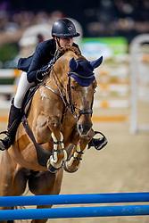 De Laet Caroline, BEL, New Star Quality<br /> Jumping Mechelen 2019<br /> © Hippo Foto - Dirk Caremans<br />  27/12/2019