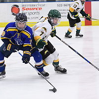 1st year forward Jenna Grube (7) of the Regina Cougars in action during the Women's Hockey home game on February 9 at Co-operators arena. Credit: Arthur Ward/Arthur Images