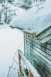THEMENBILD - Eiszapfen, Moos und Schnee am Dach einer Holzhütte am Ufer des Klammsees, aufgenommen am 06. Februar 2019 in Kaprun, Oesterreich // Icicles, moss and snow on the roof of a wooden hut on the lake shore of Klammsee in Kaprun, Austria on 2019/02/06. EXPA Pictures © 2019, PhotoCredit: EXPA/Stefanie Oberhauser