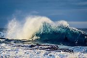 Powerful ocean waves crash against the petrified forest coastline at Curio Bay, New Zealand.
