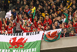 © Licensed to London News Pictures. 16/06/2012. Etihad Stadium, Melbourne Australia. Melbourne Welsh fans celebrate after Wales score a try  during the 2nd Rugby Test between Australia Wallabies Vs Wales . Photo credit : Asanka Brendon Ratnayake/LNP