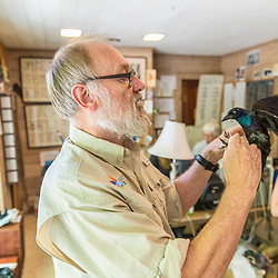 Trevor Lloyd-Evans, Director of Manomet's Landbird Conservation Program, studies a common grackle  at the Manomet Banding Lab in Manomet, Massachusetts.