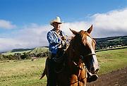 Paniolo, Hawaiian cowboy, Waimea, Kamuela, Island if Hawaii
