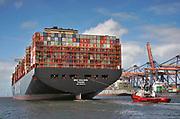 Nederland, the Netherlands, Rotterdam, 22-10-2019 Containeroverslag in de rotterdamse haven op de 2e maasvlakte, bij APM en euromax terminal, terminals. Foto: Flip Franssen