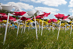 © Licensed to London News Pictures.  08/06/2013. LONDON, UK. A close up of  the Big IF installation in Hyde Park. Consisting of paper flowers each petal is meant to represent the millions of children who die each year from malnutrition. A number of charities have combined to hold a rally demanding that G8 leaders take action to tackle global hunger.  Photo credit: Cliff Hide/LNP