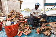 A fisherman cracks fresh conch at a roadside food stall at Potter's Cay in Nassau, Bahamas.