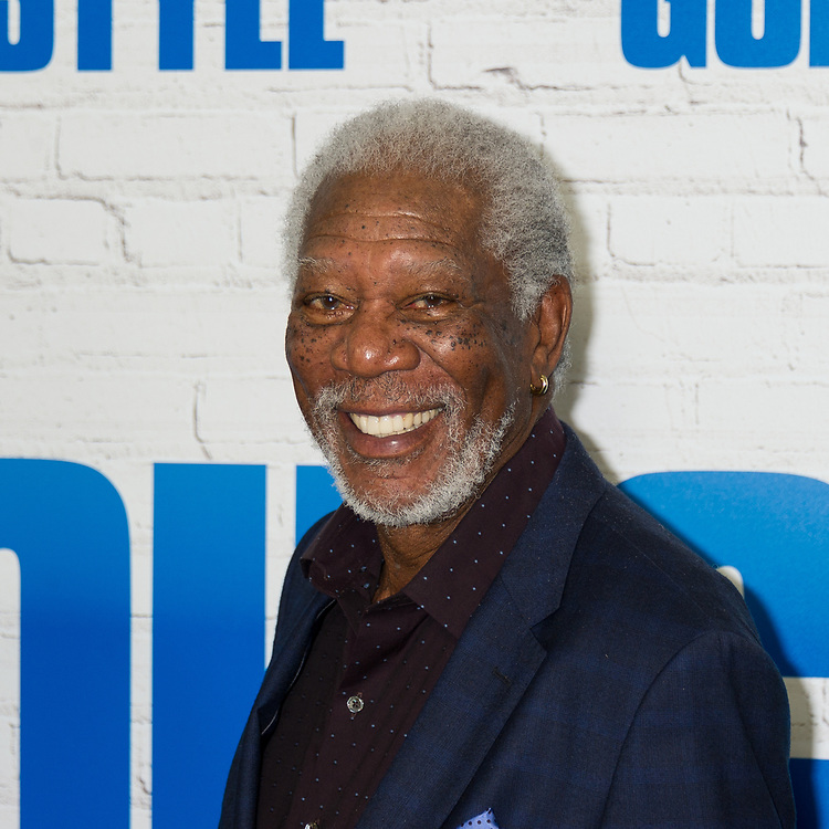 """Morgan Freeman arrives to the world premiere of """"Going In Style"""" in New York City."""