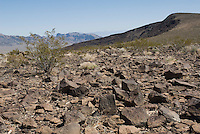 Desert varnish on rocks in the Greenwater Range on the eastern edge of Death Valley National Park, California
