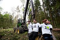 30.05.2017 Puszcza Bialowieska Aktywisci z Greenpeace i Fundacji Dzika Polska zablokowali wycinke drzew w nadl. Browsk przy uzyciu harvestera - ciezkiej i wydajnej maszyny mogacej wyciac w ciagu dnia setki drzew . Ciezkie maszyny do wyrebu i zaladunku drzew zostaly otoczone przez aktywistow . Osiem osob przypielo sie do harvestera . Miejsce protestu jest obszrem legowym dzieciola trojpalczastego i soweczki N/z aktywisci przypieci do maszyny harvester fot Michal Kosc / AGENCJA WSCHOD