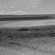Dried lakebed with 3 Rhea feeding in the grass