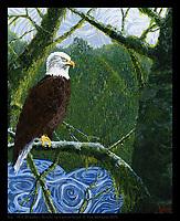 Joy Eagle - 16 x 20 in, Acrylic on canvas. © Tim McGuire 2019