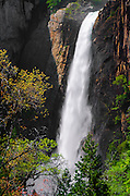 Lower Yosemite Fall, Yosemite National Park, California
