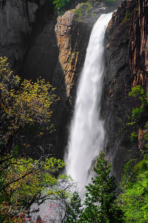Lower Yosemite Fall, Yosemite National Park, California