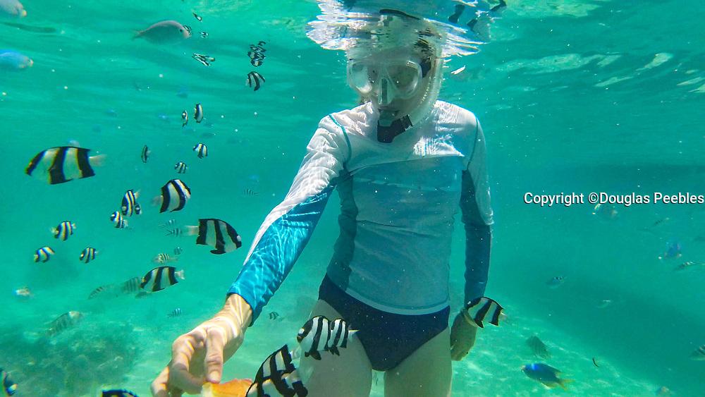 Snorkeling, Huahine, French Polynesia, French Polynesia