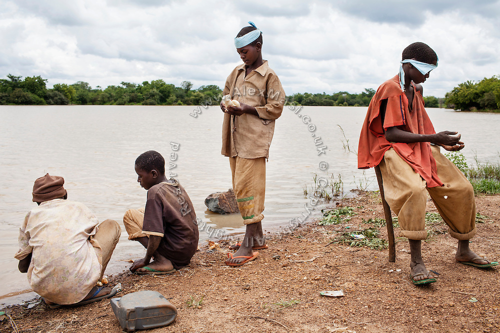 Boys are washing cassava on the shore of a dam, built for drinking water, but now spiked with lead, as the location was used until recently as an artisanal gold processing site, near Bagega, pop. 9000, a large, village affected by lead poisoning due to the unsafe techniques employed for extracting gold, in Zamfara State, Nigeria. The processing site has now been moved a little further away, about 2 Km from the main village, in an effort to reduce the possibility of human contamination. Some villagers still use dam water for their needs, as boreholes and wells are often malfunctioning. The lead contamination is caused by ingestion and breathing of particles released in the steps to isolate the gold from other metals. This type of lead is soluble in stomach acid and children under-5 are most affected, as they tend to ingest more through their hands by touching the ground, and are developing symptoms often leading to death or serious disabilities.