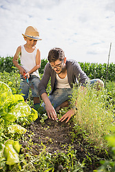 Father and son planting seedlings in community garden, Bavaria, Germany