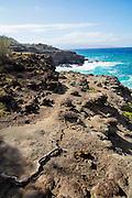 Large Surf, Nakalele Coast, Maui, Hawaii