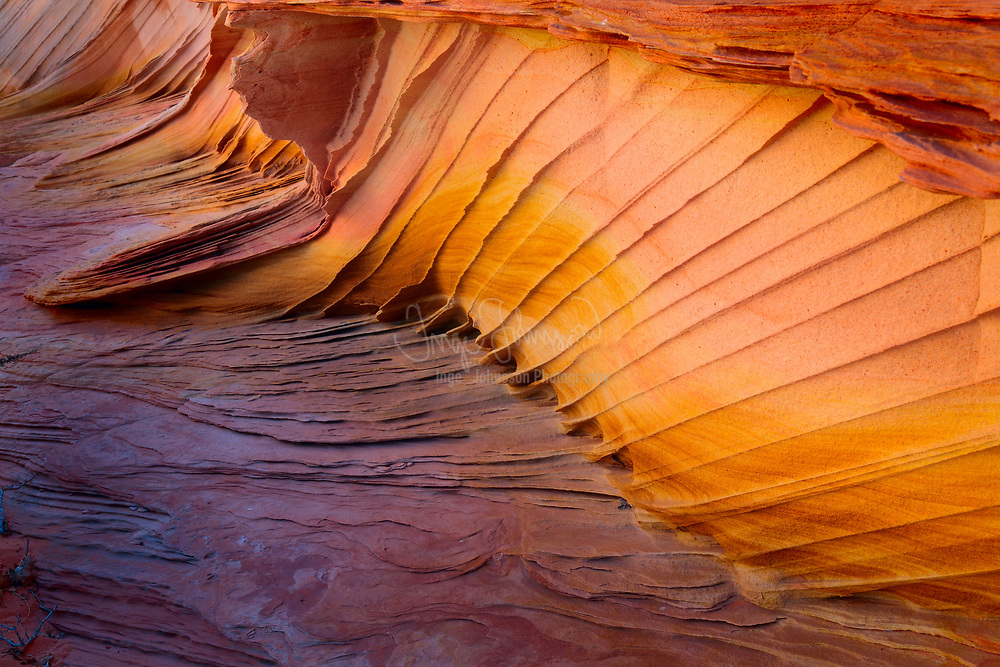 Fantastic colors and shapes in sandstone detail at South Coyote Buttes, Arizona