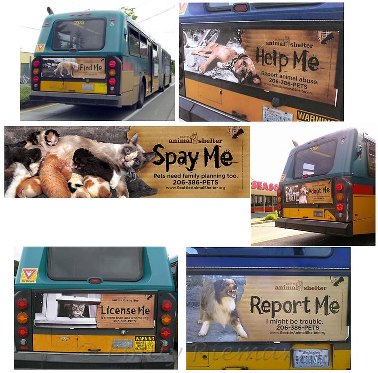 Seattle Animal Shelter ads on Metro buses