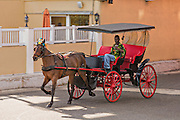 Horse drawn carriage on the streets of Nassau, Bahamas, Caribbean