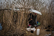 One of the many shelters where migrants are living in a make shift camp near Subotica. Police often tries to clear the camp and to move the migrants in governament camps, so many of them hides in the woods. Subotica, Serbia. March 18th, 2017. Federico Scoppa