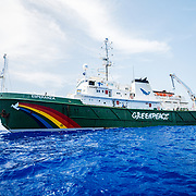The Greenpeace ship Esperanza during its expedition to the Sargasso Sea, a unique region in the North Atlantic Ocean that is home to a diverse array of marine life, including loggerhead and green sea turtles.  The journey will see Greenpeace and University of Florida researchers team up to study the impact of plastics and microplastics on marine life and the importance that the Sargasso's drifting Sargassum seaweed habitat has for the development of juvenile sea turtles.