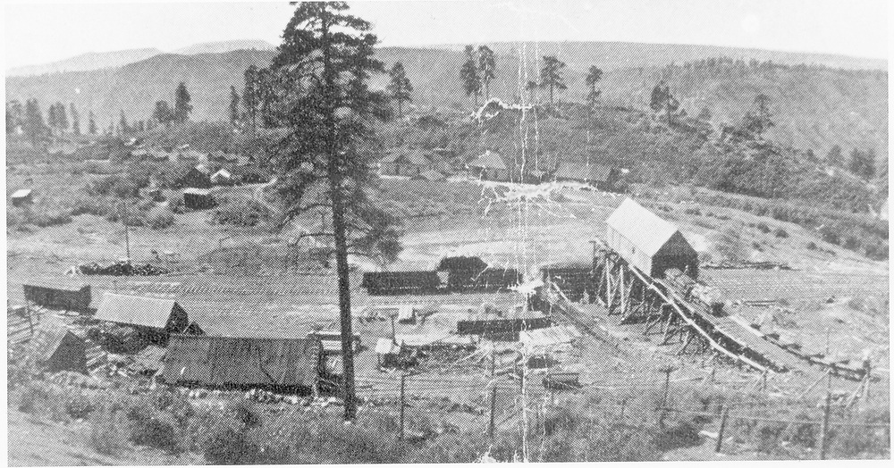 """An elevated panorama view of Boston Coal & Fuel Co. Perins Peak coal mine facilities serviced by RGS.<br /> Boston Coal & Fuel Co.  Perins, CO  ca. 1902<br /> In book """"Durango: Always a Railroad Town (1st ed.)"""" page 88<br /> Also in """"RGS Story Vol. XI"""", pp. 330-331 and """"Rio Grande ? to the Pacific!"""", p. 282.<br /> This print is cropped compared to these two book photos.<br /> Thanks to Don Bergman for additional information."""