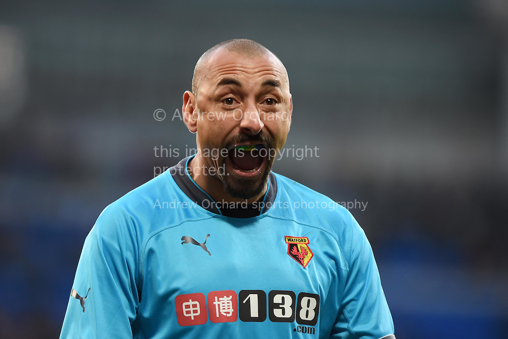 Watford goalkeeper and capt Heurelho Gomes celebrates after his teammate Odion Ighalo scores his teams 2nd goal to make it 1-2.  Skybet football league championship match, Cardiff city v Watford at the Cardiff city stadium in Cardiff, South Wales on Sunday 28th December 2014<br /> pic by Andrew Orchard, Andrew Orchard sports photography.
